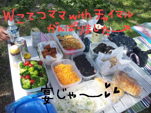 5ボステリと宴を★幸手市権現堂公園_d0187891_11544037.jpg