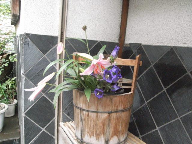 今週のお花_e0116211_1133876.jpg