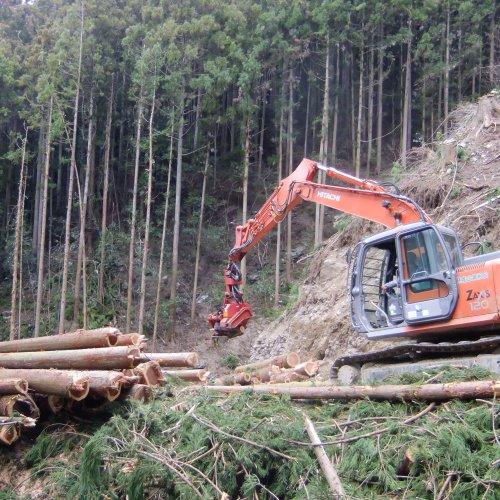 高知県産の木材を使って家創り!_b0112557_3404083.jpg