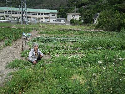 お野菜ありがとー♪_e0028387_2051264.jpg