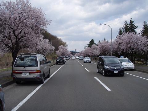 今年初、泉ヶ岳_b0074601_15463623.jpg