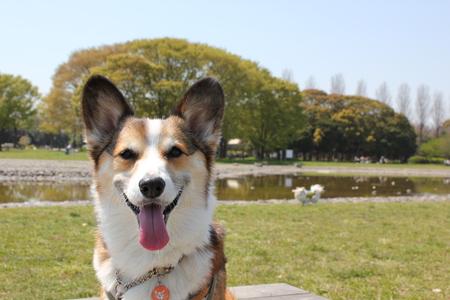 水元公園へ~♪_f0155118_1194255.jpg