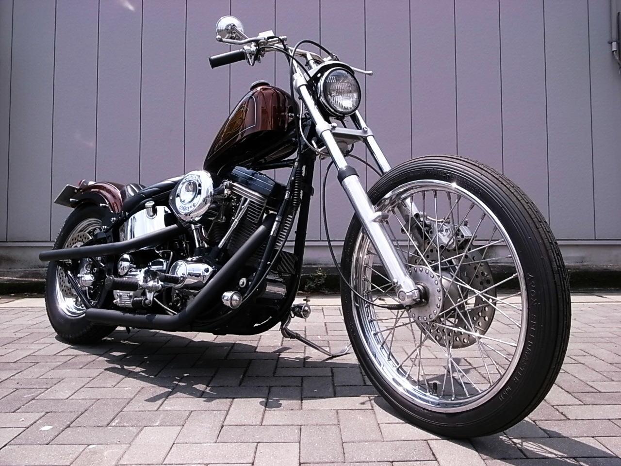 EVO Softail Chopper_b0160319_12423465.jpg