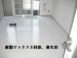 f0031037_2034104.jpg