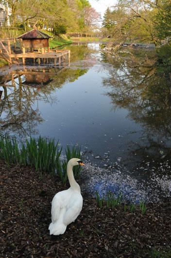 奥卯辰山健民公園(2)_c0093046_19174119.jpg