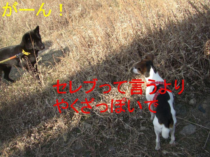 f0053952_144045.jpg