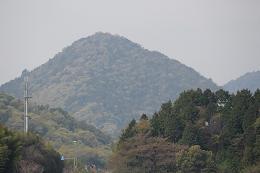 新緑が、モコモコモコ_e0175370_10555419.jpg