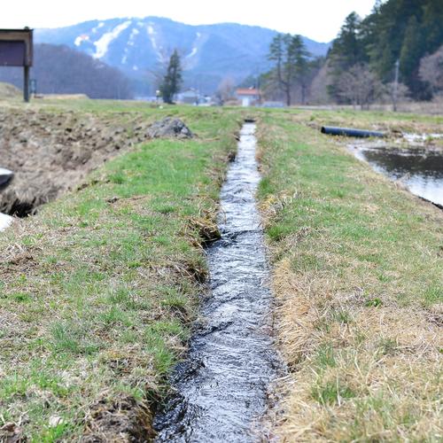 八幡湿原・遅春_f0099102_11583074.jpg