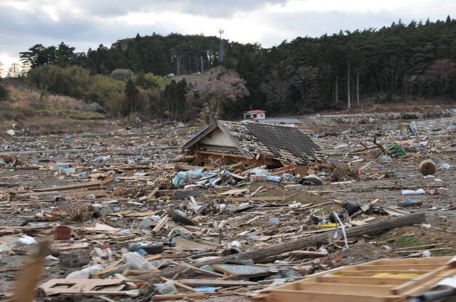 被災地を訪ねて_c0162404_17164829.jpg