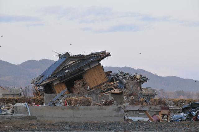 被災地を訪ねて_c0162404_171830100.jpg