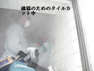 f0031037_20444213.jpg
