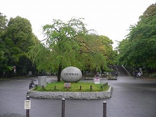 上野ツアー。大学編_d0137764_148165.jpg