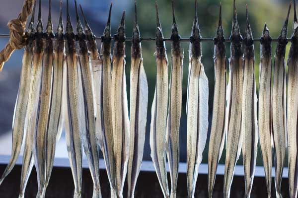 細魚の干物