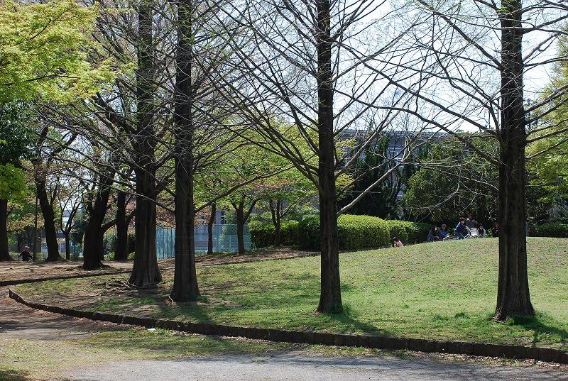 春の近所散策_c0187781_1821130.jpg