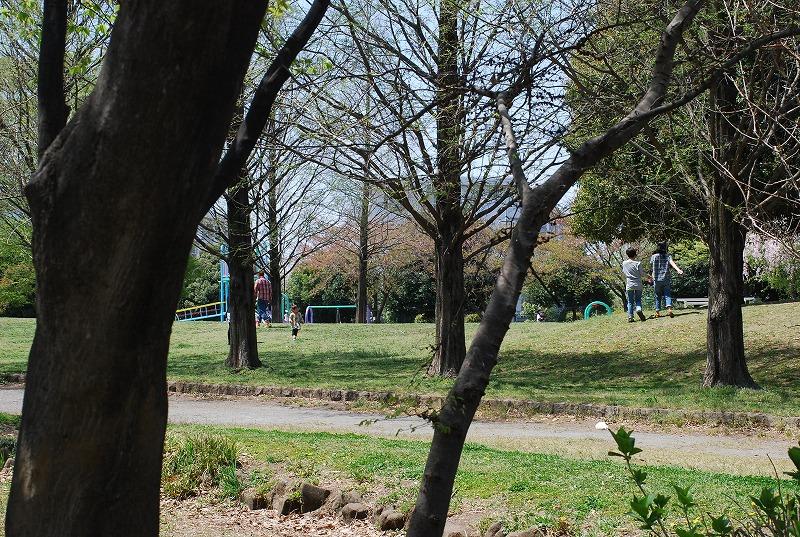 春の近所散策_c0187781_18212541.jpg
