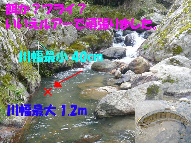 f0183484_2014883.jpg