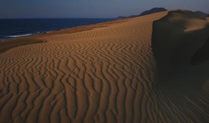 ...夕方近く..いい風が吹いてたので鳥取砂丘へ..._b0194185_23141595.jpg
