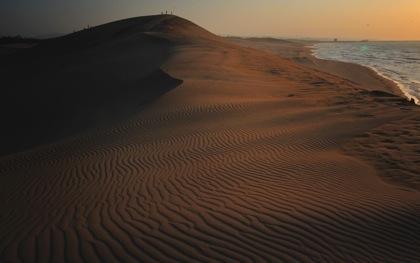 ...夕方近く..いい風が吹いてたので鳥取砂丘へ..._b0194185_2385341.jpg