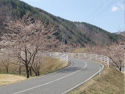 春よ来い!!_b0219993_10263225.jpg