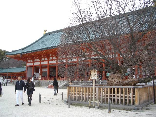 京都花見旅行4_a0047004_122457.jpg