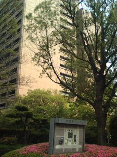 原発なしで暮らしたい百万人アクションin広島の写真_e0094315_17323791.jpg