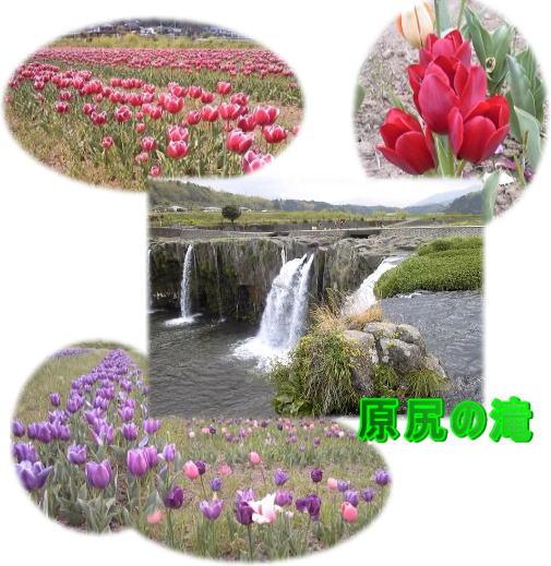 d0070316_15382479.jpg