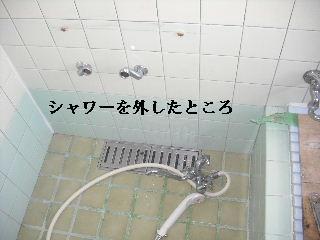f0031037_21565220.jpg