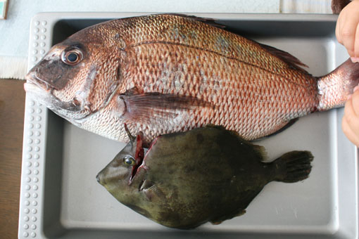 鯛と卵のマヨサラダ_c0182144_1395447.jpg