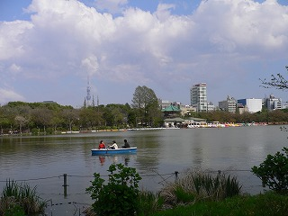 上野ツアー。動物園編_d0137764_1213399.jpg