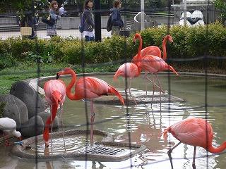 上野ツアー。動物園編_d0137764_1264552.jpg