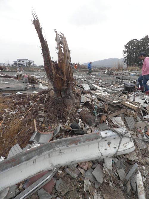 GWはぜひ東北へお出かけになり、手厚い、心からの支援を。気仙沼、被災現場より。_b0032617_13512465.jpg
