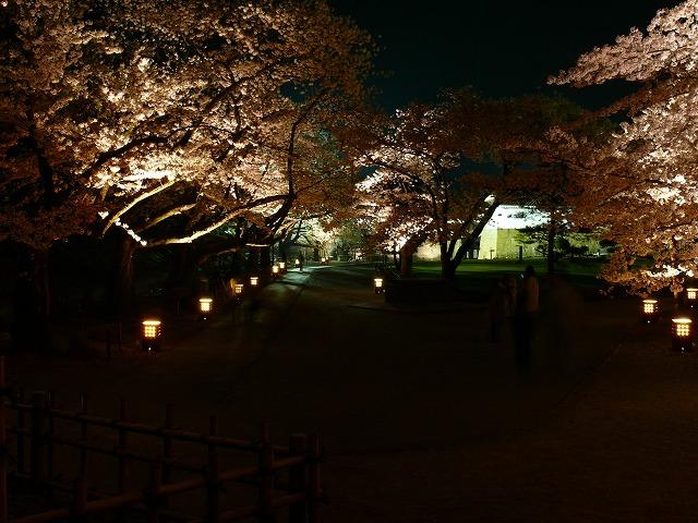 会津鶴ヶ城 夜桜_f0032130_217335.jpg