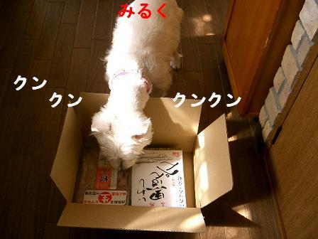 c0212637_020098.jpg
