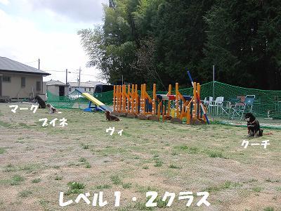 f0186040_0153375.jpg