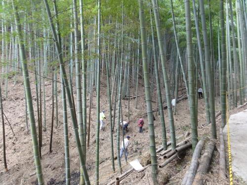 2011年4月度「大人の林間・臨海学校」第1日目_c0108460_23343937.jpg