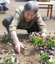春なので!_e0142373_20414317.jpg