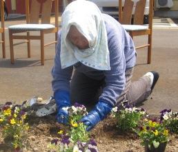 春なので!_e0142373_2044315.jpg