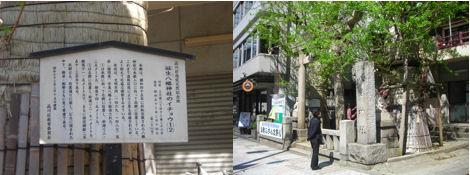 神社と狛犬その16・誕生八幡神社_d0183174_1945551.jpg