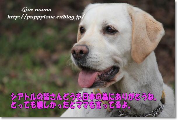 b0136683_10112312.jpg