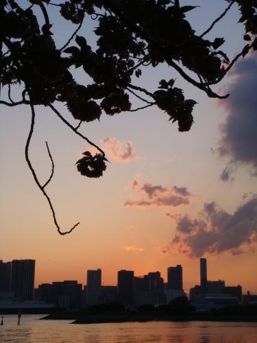 東京出張_f0201286_19162375.jpg