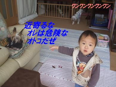 f0179203_92940.jpg