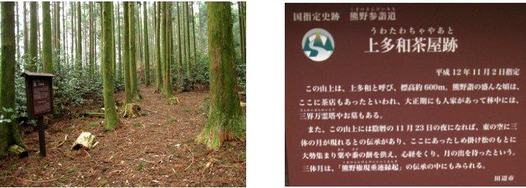 熊野古道編(12):石屑の坂道(10.3)_c0051620_61530100.jpg
