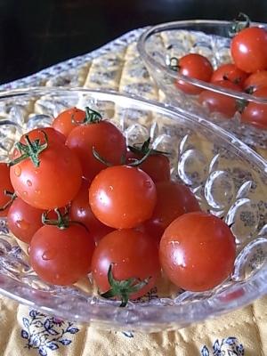 ++野菜ソムリエサミットでうまトマト第一位獲得++_e0140921_10592757.jpg