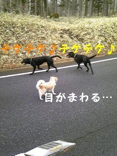 f0148927_1022133.jpg