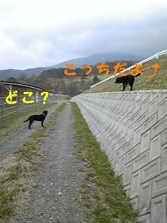 f0148927_10251786.jpg