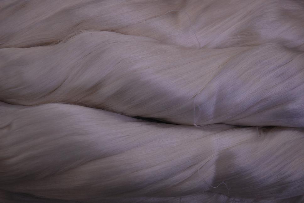 絹糸のかがやき_d0176048_17173452.jpg