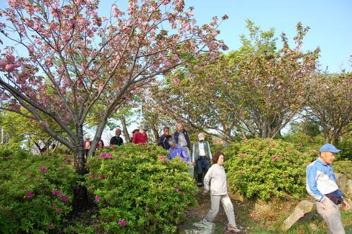 2011年4月度「大人の林間・臨海学校」第2日目_c0108460_17271118.jpg