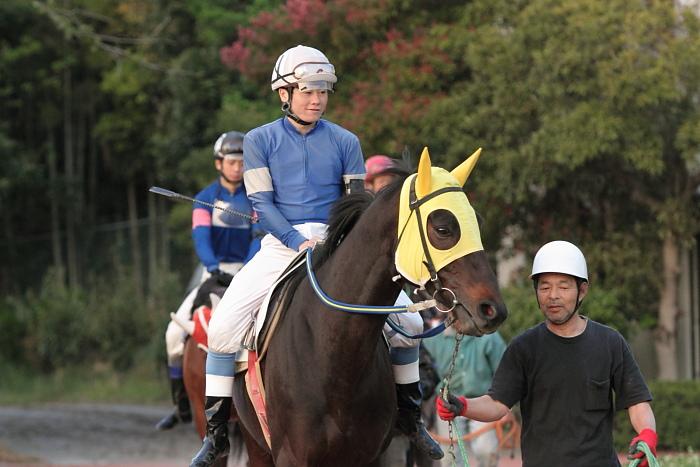 2011年4月23日(土) 高知競馬 7R にごう協賛 全国のお馬に感謝特別 C3-7_a0077663_6331855.jpg