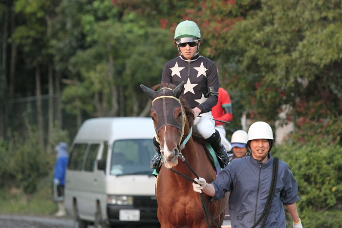 2011年4月23日(土) 高知競馬 7R にごう協賛 全国のお馬に感謝特別 C3-7_a0077663_6333595.jpg