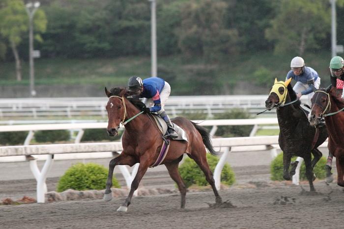 2011年4月23日(土) 高知競馬 7R にごう協賛 全国のお馬に感謝特別 C3-7_a0077663_6334811.jpg
